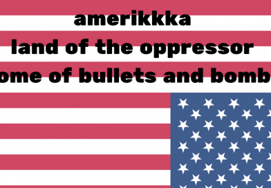 amerikkka is stolen land